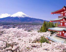 i 3 migliori etf per investire in Giappone - segretibancari.com